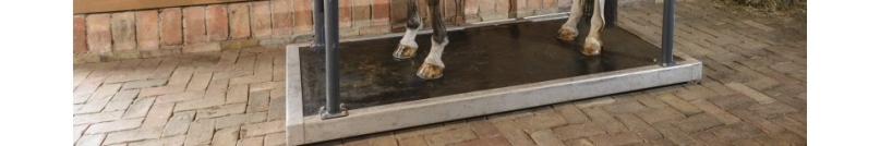 Vibrating floor for horses | BM Horse